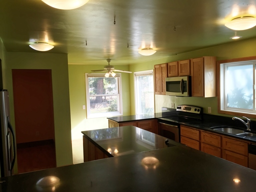 Granite and stainless steel appliances